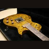 Bassart Guitars Roaddog Deluxe