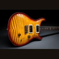 PRS Custom 24 Privat Stock Brasilien Rosewood Neck #236123